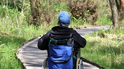 Photograph of a wheelchair user on a path at Sculthorpe Moor Nature Reserve
