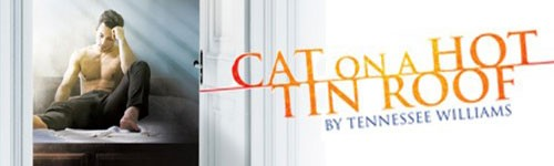 Photograph of poster for 'Cat on a Hot Tin Roof'