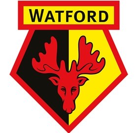 A Disabled Access Day preview at Watford Football Club